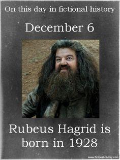(Source) Name: Rubeus Hagrid Birthdate: December 6, 1928 Sun Sign: Sagittarius, the Archer Animal Sign: Earth Dragon
