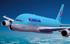 Korean Air Resumes Flights between St. Petersburg and Seoul - Rus Tourism News Flight Map, Korean Airlines, Airline Logo, Aviation News, Career Inspiration, Airbus A380, Air Travel, Endangered Species, Vintage Advertisements