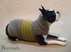 Dog Sweater.