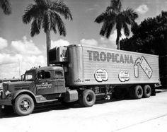 a tropicana White sleeper truck  bradenton, florida