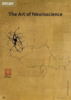 The brain is not only the most complex system we know about, but recent advances in imaging are showing us the immense beauty of this s… Brain Drawing, Brain Art, Brain Science, Science Art, Greg Dunn, Embodied Cognition, Divine Proportion, Wise Mind, Brain Based Learning