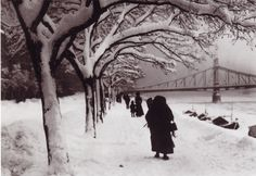 Rudolf Balogh was an innovative Hungarian photographer, who was born in 1879 and died in [Rudolf Balogh, Budapest] New York Winter, Budapest Hungary, Future Travel, Black And White Pictures, Winter White, Old Photos, Google Images, History, Artwork