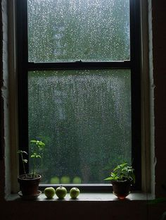 watching rain trickle down your window while being warm & safe inside!