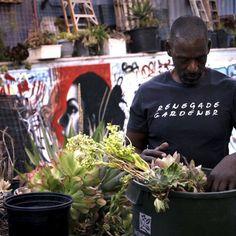 How Urban Gardening Can Save Black Communities