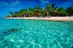 White Sand Beaches | ... scenic landscapes of palm trees and white sand beaches, Indo-Pacific