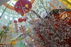 Plum blossoms and lanterns at Sunway Pyramid Chinese New Year Decorations, New Years Decorations, Year Quotes, Blossoms, Plum, Lanterns, Seasons, Painting, Art