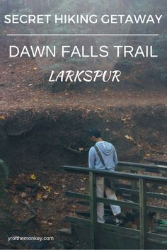 Larkspur hiking dogs Dawn falls trail. Dog Friendly Travel. Travel with dogs
