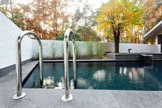 zwemvijver met inox trap en kraakhelder water. zwemvijverbouwer van het jaar!