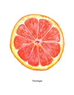 Delight yourself in a deliciously Fresh Watercolor Illustration of a juicy ruby red grapefruit with Spanish title. What better to inspire healthy