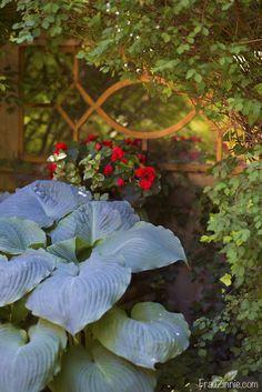 Secret Gardens hint at whimsy, glamour | Frau Zinnie