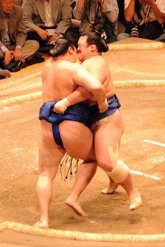 #Japan sumou #sumo #sports #wrestling