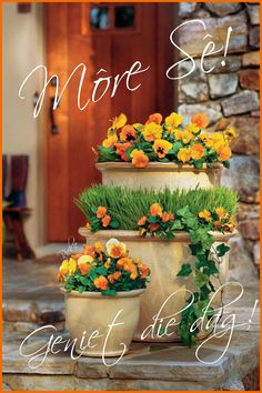 Good Morning Greetings, Good Morning Wishes, Lekker Dag, Goeie Nag, Goeie More, Special Quotes, Planter Pots, Bouquet, Table Decorations