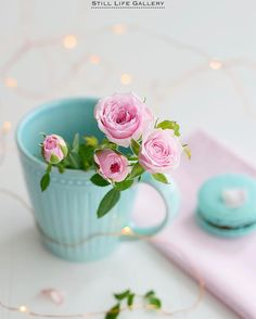 All Things Shabby and Beautiful My Flower, Flower Power, Flower Wallpaper, Iphone Wallpaper, Whatsapp Wallpaper, Shabby Flowers, Pastel Colors, Pastels, Pastel Flowers