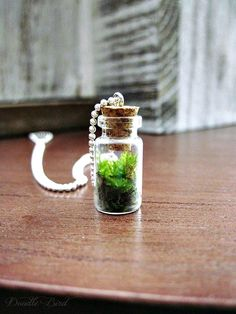 Terrarium Necklace with Sterling Silver Chain. $16.00, via Etsy.