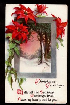 Wolf A s Clapsaddle Pointsetta Scene Christmas Postcard | eBay