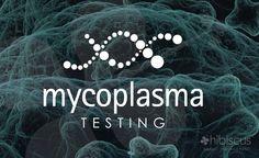 hibiscus logos - mycoplasma testing logo - dna logo - twisting logo - scientific logos