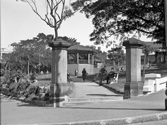 Green Park,Darlinghurst,in eastern Sydney in the early Sydney City, Green Park, Historical Images, Blue Mountain, South Wales, The Good Old Days, Family History, Time Travel, East Coast