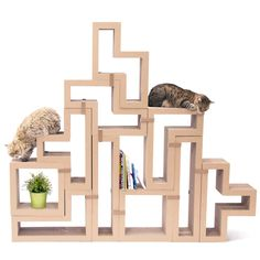 Katris is a cat tree, a bookshelf, a cat scratcher, a coffee table, a cat climbing pole, and a shoe rack, the use case is by your imagination.