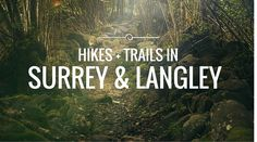 Best Hikes And Trail Walks In Surrey/Langley - 604 Now Vancouver Hiking, Fraser Valley, Canada, Get Outdoors, Best Hikes, Weekend Trips, Outdoor Fun, Surrey, Hiking Trails