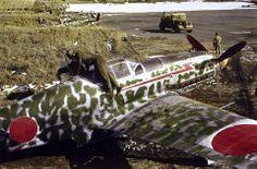 There is a Ki-61 (TONY)