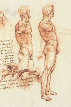 Leonardo Da Vinci's sketches. Vrr butiful and timeless. Page: The anatomy of a male nude and a battle scene    Artist: Leonardo da Vinci    Completion Date: c.1505    Place of Creation: Florence, Italy    Style: High Renaissance    Genre: sketch    Gallery: The Royal Collection, Windsor-Castle, Windsor, UK    Tags: male-nude, horsemen, parts-of-human-body