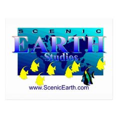 Scenic Earth Studios Fine Art Gallery Post Card Ad - postcard post card postcards unique diy cyo customize personalize