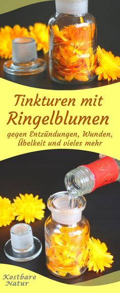Bei Entzündungen im Rachenraum, Quetschungen und Verdauungsproblemen kann eine … In the case of inflammation in the throat, bruising and digestive problems, a marigold tincture can provide relief. Natural Medicine, Herbal Medicine, Monster Cookie Bars, Perfume, Diy Beauty, Healthy Life, Herbalism, Remedies, Herbs
