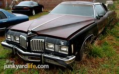 pontiac grand prix sj | This dark blue Pontiac Grand Prix SJ model was trimmed with gold ...