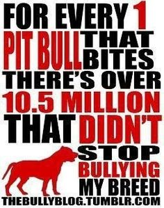 Educate, don't discriminate!  Pit bull dogs <3