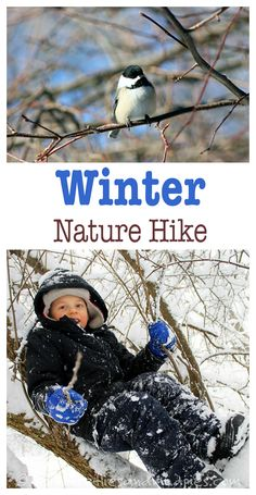 Get outside and into nature—even in the winter! Great ideas for a winter nature hike here. | Fireflies and Mud Pies