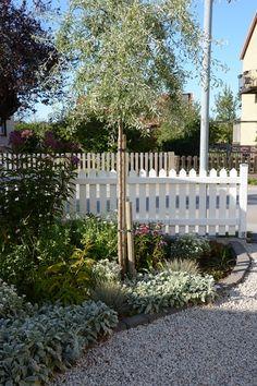 Om jag bara får ge ett enda tips som har med trädgård att göra, så skulle det nog vara detta: Samla ihop växter, både perenner, roso...