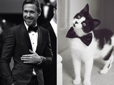 Girls' Favorite Things Brought Together: Hot Guys and Kittens (PART II) | Bored Panda