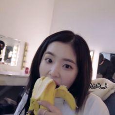 Seulgi, Daegu, Red Velvet Photoshoot, Red Velvet Irene, Meme Faces, Yoona, Me As A Girlfriend, Kpop Girls, Cool Girl