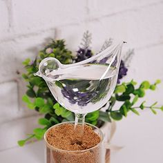 Glass Bird Watering Cans bird Sprayers drip irrigation emitter automatic >>> You can get additional details at the image link.