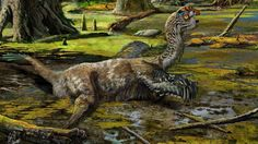 A newly discovered species of dinosaur is identified from an extraordinarily complete fossil almost destroyed by dynamite.