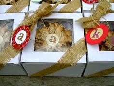 DIY Window Gift or Food Boxes - That's My Letter Blog