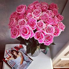 Roses rose /  Pink Flowers