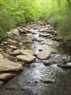 pictures of the outdoors | ... Outdoors - Gatlinburg - Reviews of Smoky Mountain Outdoors