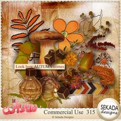 Save 30% off Commercial Use 315