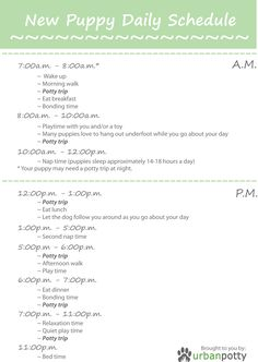 Printable Checklist by Urban Potty: New Puppy Daily Schedule