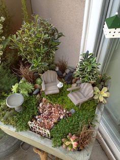 Mini garden.