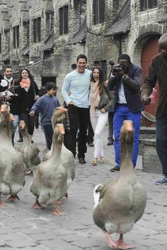 Josh Murray and Andi Dorfman Take in the Goose Parade in Ghent in Episode 7