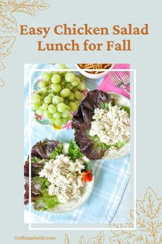 Do you need an easy dinner or lunch for your family during or after the holidays. Easy Chicken Salad a healthy family meal with grapes and made quick and easy in the Instant Pot. Hip Pressure Cooking, Pressure Cooking Recipes, Quick Family Dinners, Healthy Family Meals, Easy Chicken Dinner Recipes, Fall Dinner Recipes, Costco Rotisserie Chicken, Perfect Roast Chicken, Small Appliances