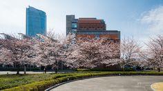 National Graduate Institute for Policy Studies (政策研究大学院大学). / Architect : Yamashita Sekkei + Richard George Rogers (設計:山下設計、リチャード・ロジャース設計).