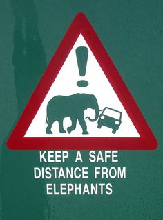Keep a Safe Distance(South Africa) Elephants.never saw a sign like that but did see the work of some elephants! African Elephant, African Safari, African Theme, Statues, Funny Road Signs, South Afrika, Out Of Africa, Kruger National Park, My Land