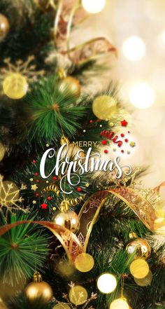 Nearly everywhere you go Christmas music is playing. Christmas Mood, Merry Christmas And Happy New Year, Christmas Greetings, All Things Christmas, Christmas Cards, Christmas Decorations, Mary Christmas, Magical Christmas, Christmas Quotes