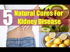 Kidney Disease Natural Remedy and Kidney Disease Diet Plan