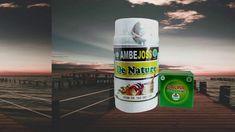 cara tradisional mengobati ambeien luar Honest Tea, Bottle, Drinks, Nature, Moonlight, Naturaleza, Flask, Drink, Natural