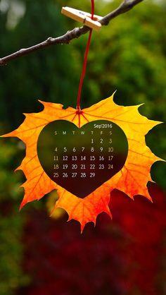 Wallpaper IPhone Calendar September 2016⚪️