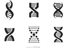 Dna helix free vector graphic art free download (found 161 files ...